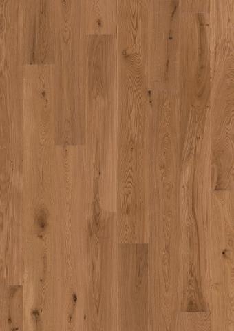 Engineered UV Oiled European Oak Swatch